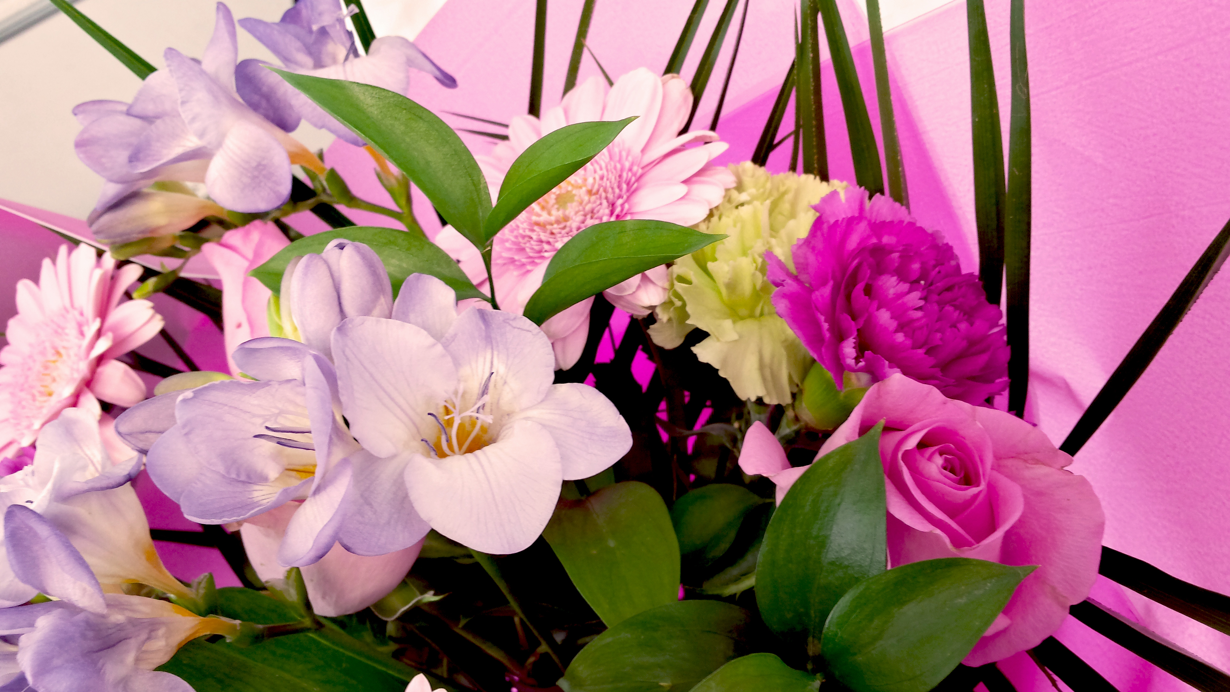 How To Care For A Bouquet Fresh Cut FlowersFlower Press