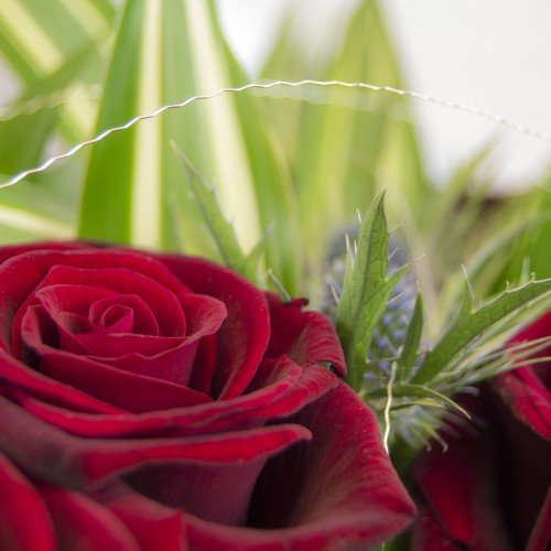 6 Deadly Mistakes When Storing Valentines Day Flowers Overnight