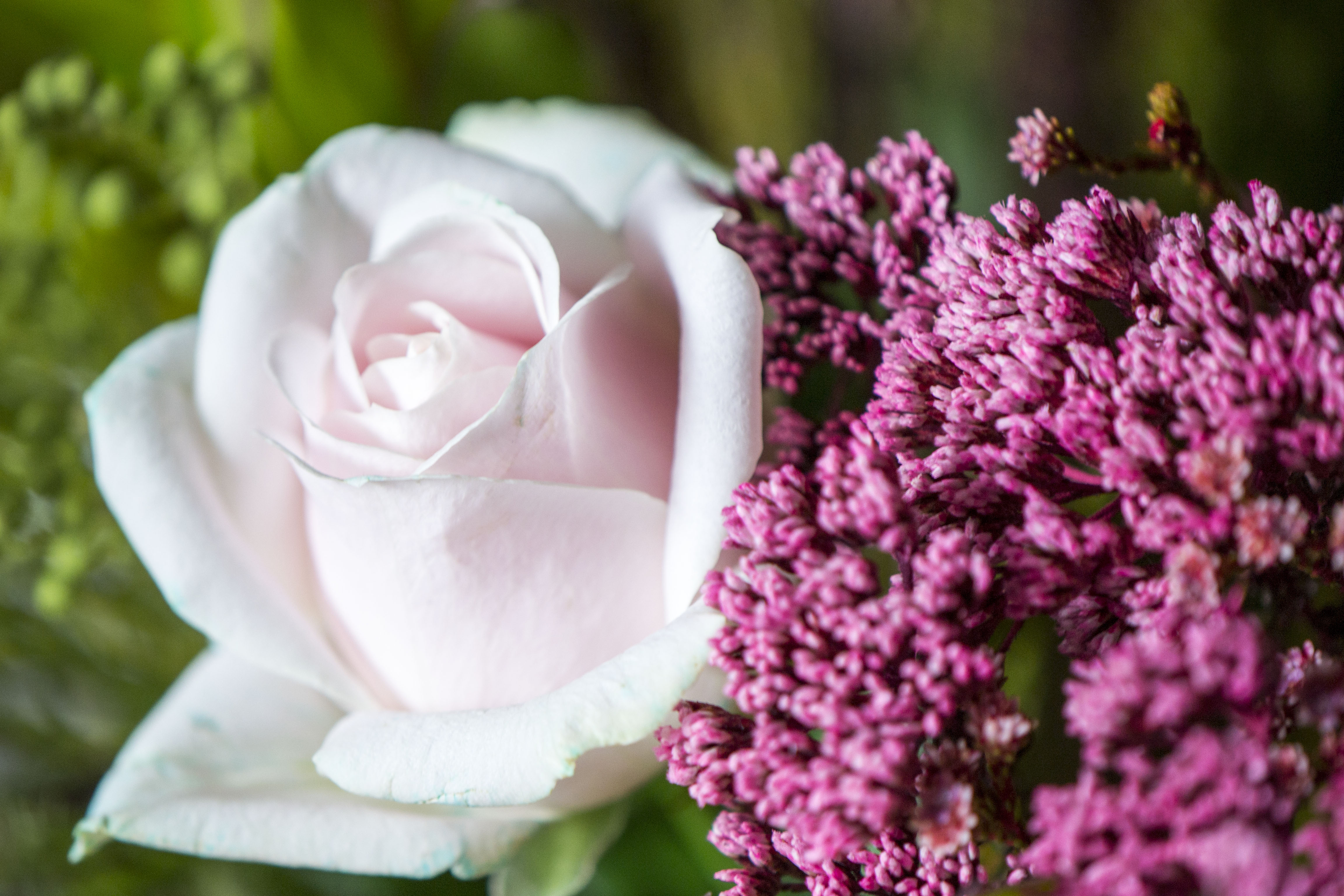How To Care For A Bouquet Of Fresh Cut Flowers