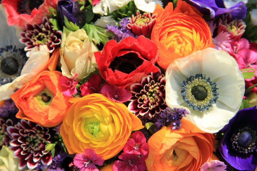 Colourful Bouquets For Valentines DayFlower Press