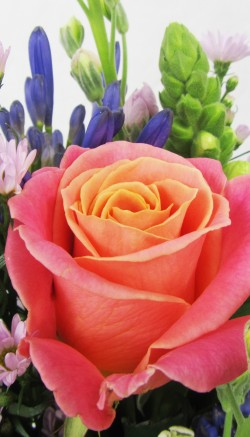 Mothers Day Flowers International Delivery