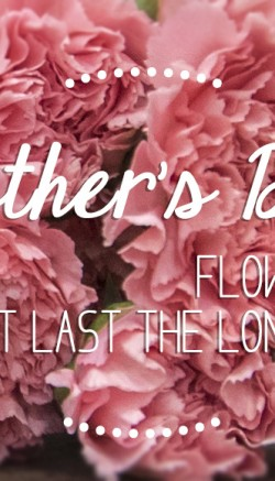 mothers day flowers that last longer