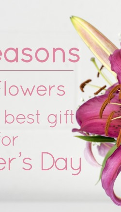 mothers day flowers 10 reasons