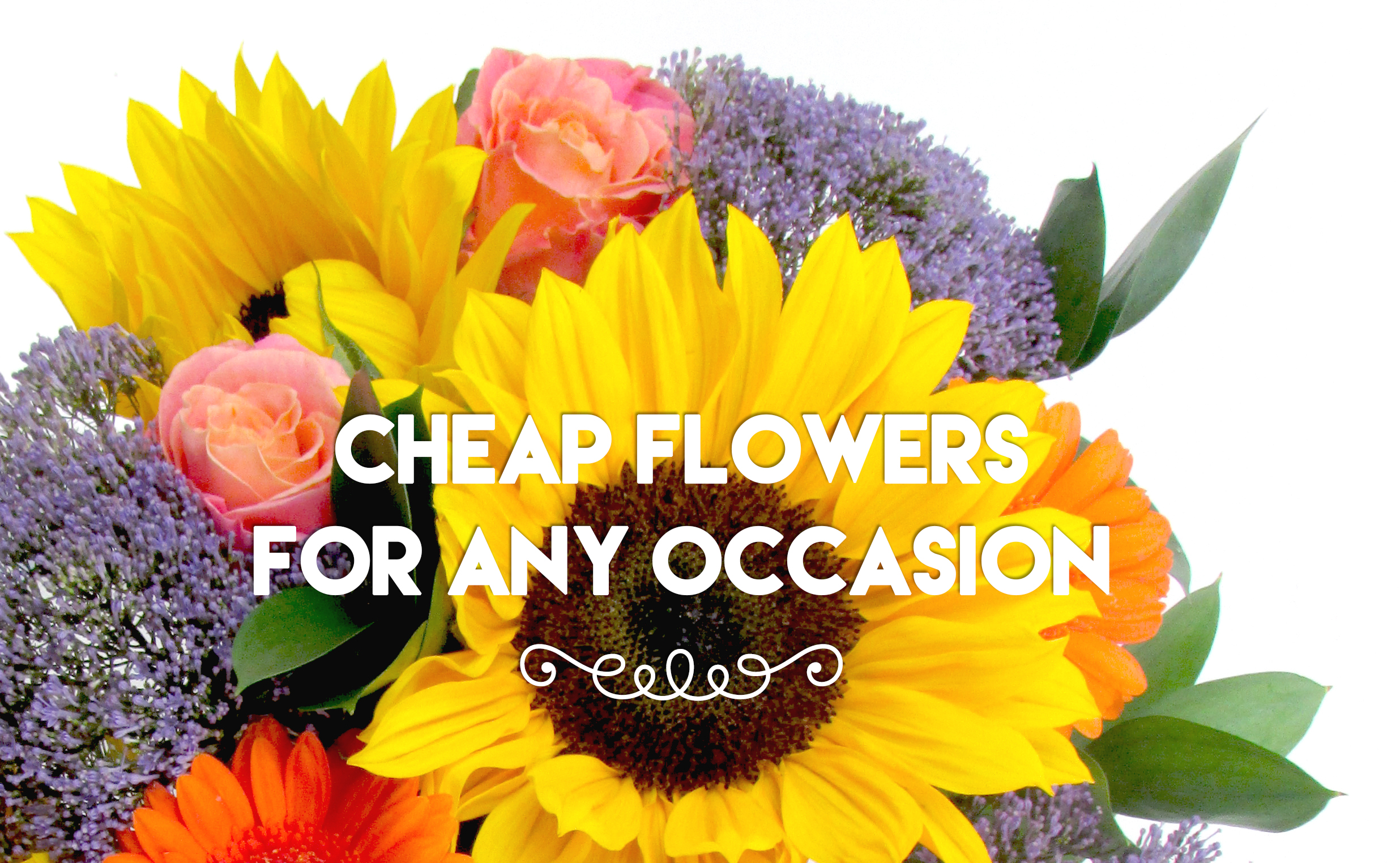 Cheap Flowers For Any Occasion Flower Pressflower Press