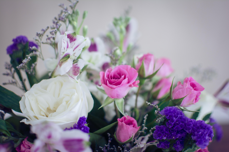 Get well soon archives flower pressflower press