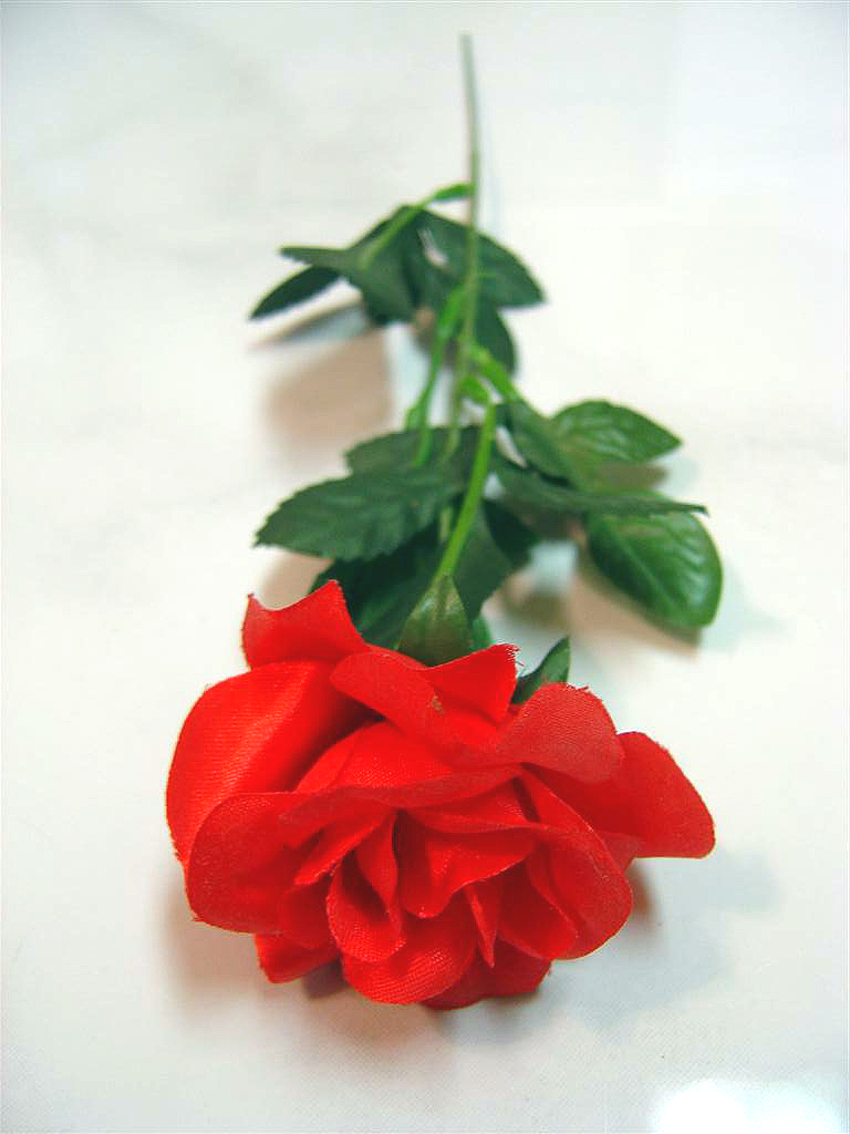 The history of silk flowers flower press the history of silk flowers mightylinksfo