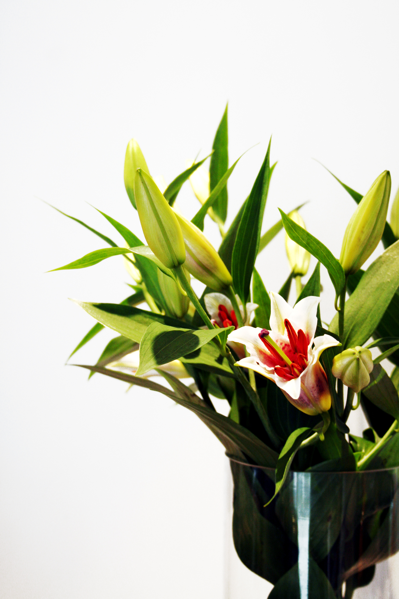 Hand tied bouquet or vase arrangement flower pressflower press vase versus hand tied flowers reviewsmspy