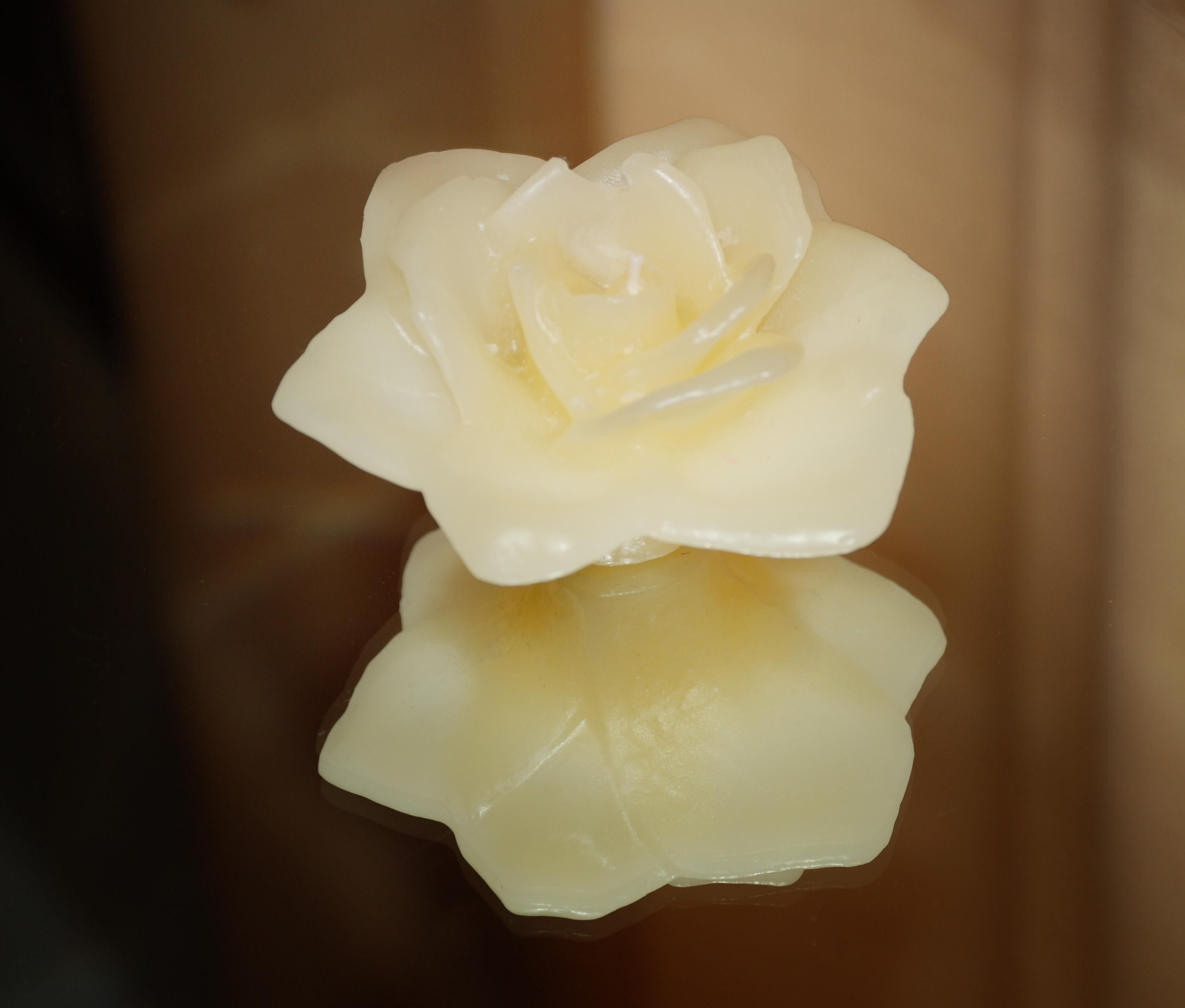Making Your Own Wax Flowers Flower Press