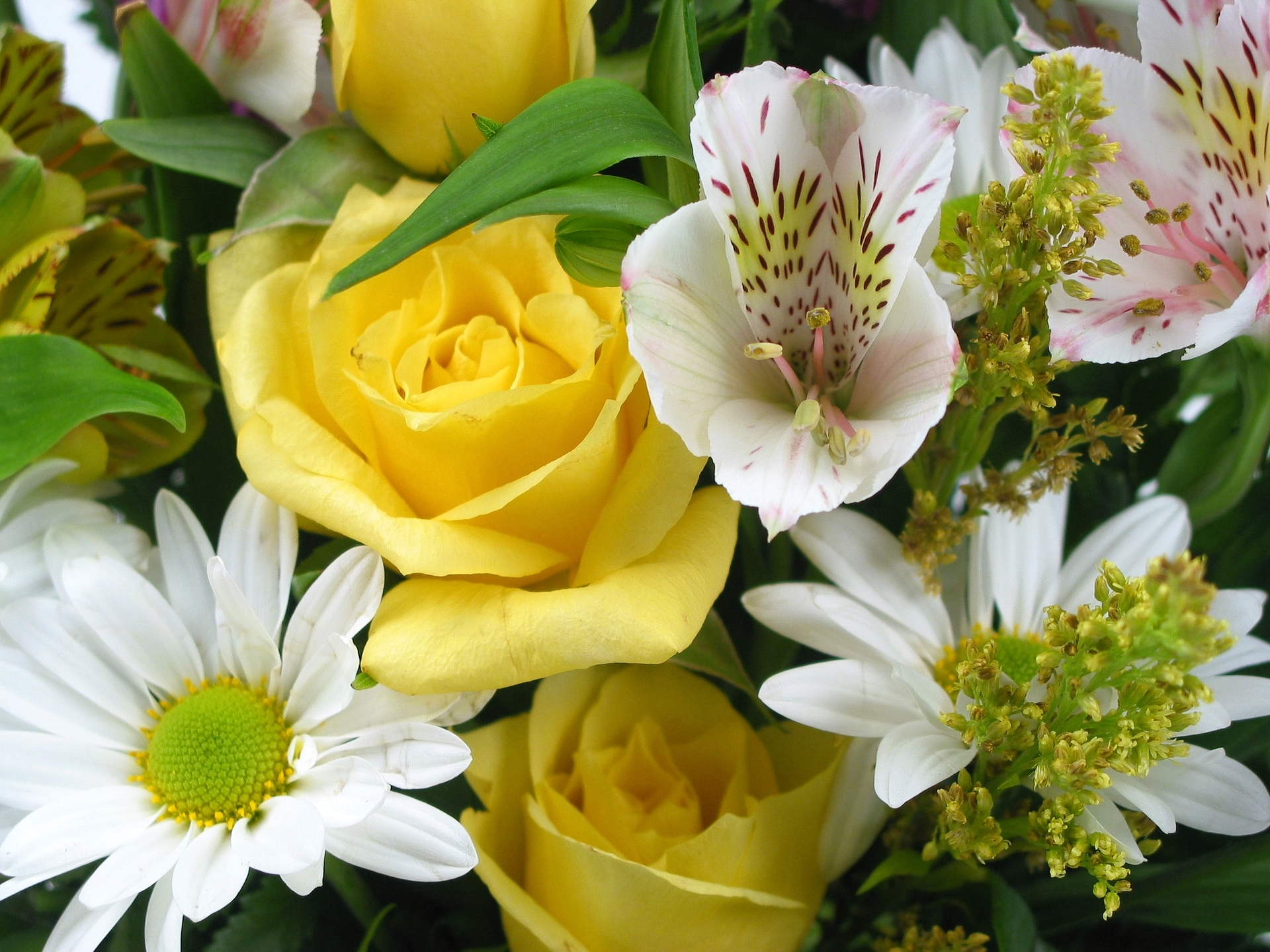 An easy to make hand-tied bouquet - Flower PressFlower Press