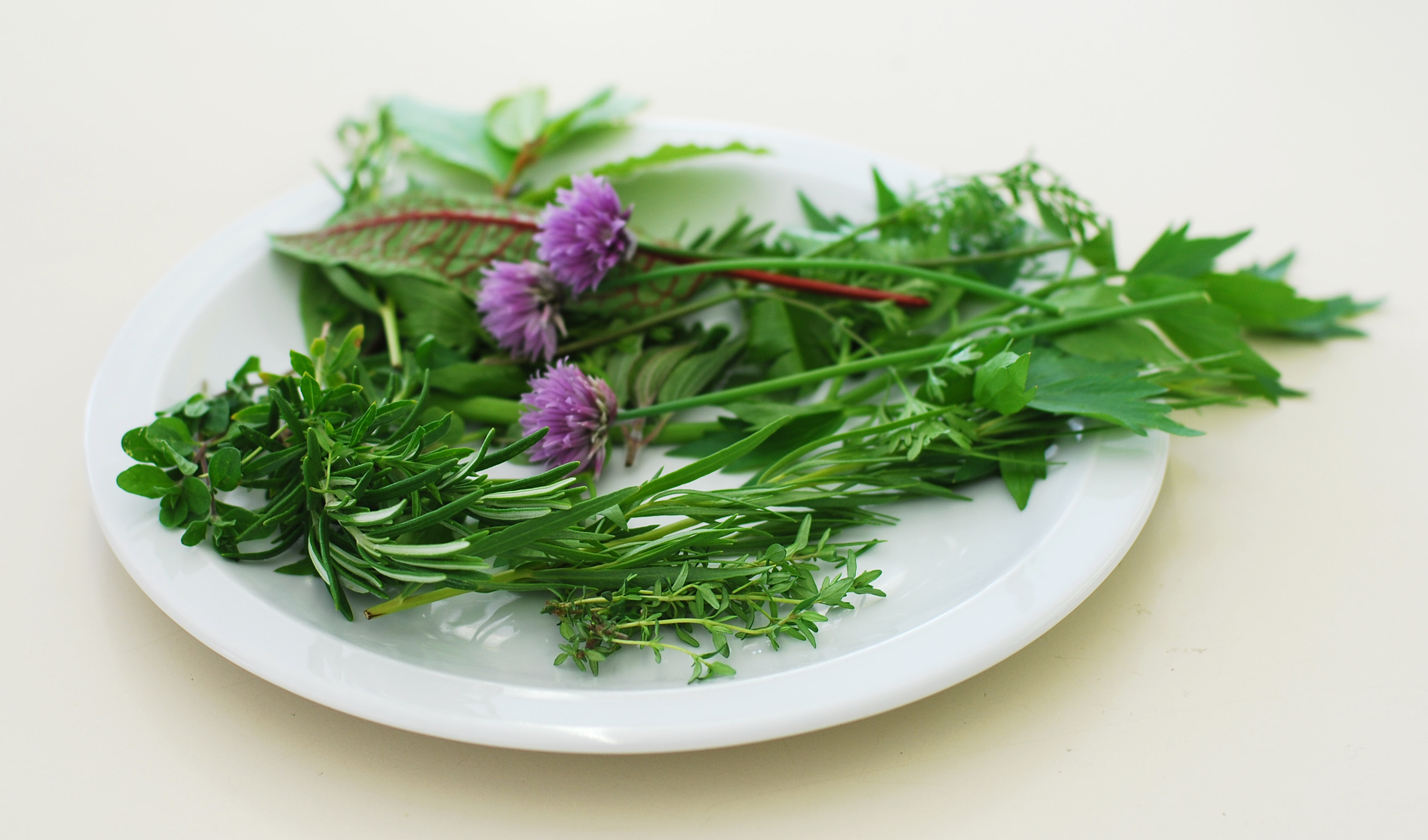 how to make a wreath with herbs flower pressflower press