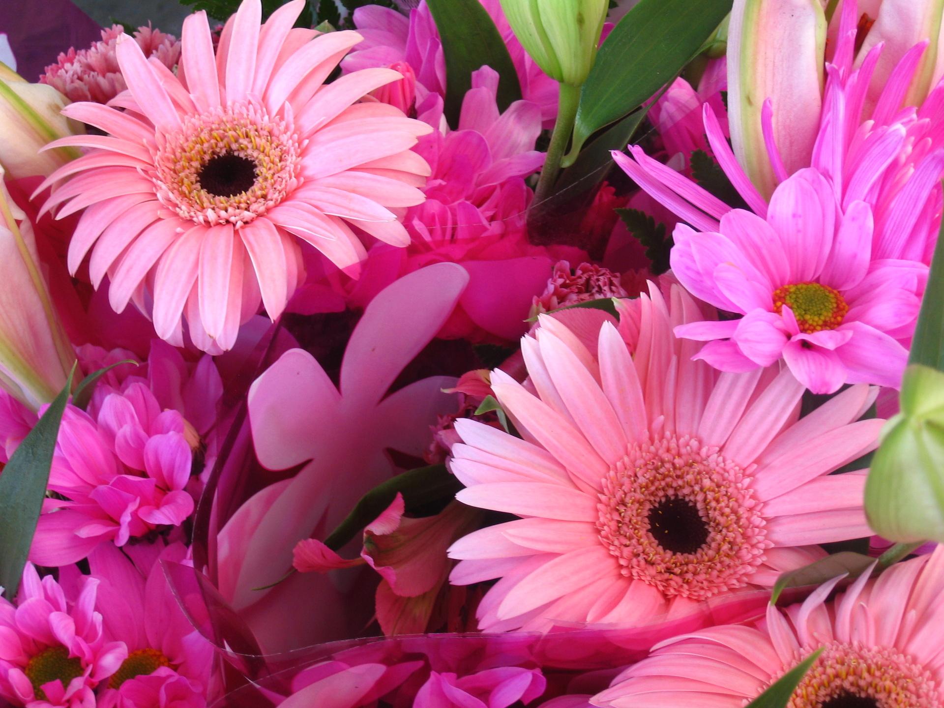 Should you send fresh flowers or silk flowers?