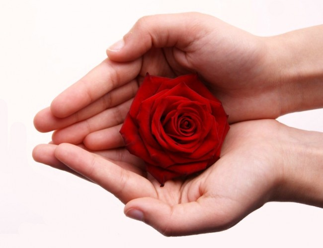Keep Valentine's Day flowers beautiful for longer