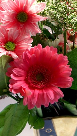 Mother's Day flowers for your Mother-in-law