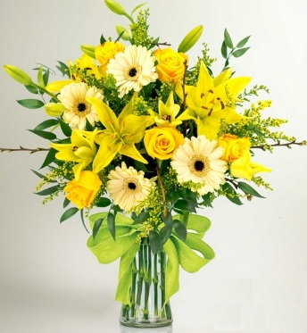 Top Yellow Flower Choices Flower Press