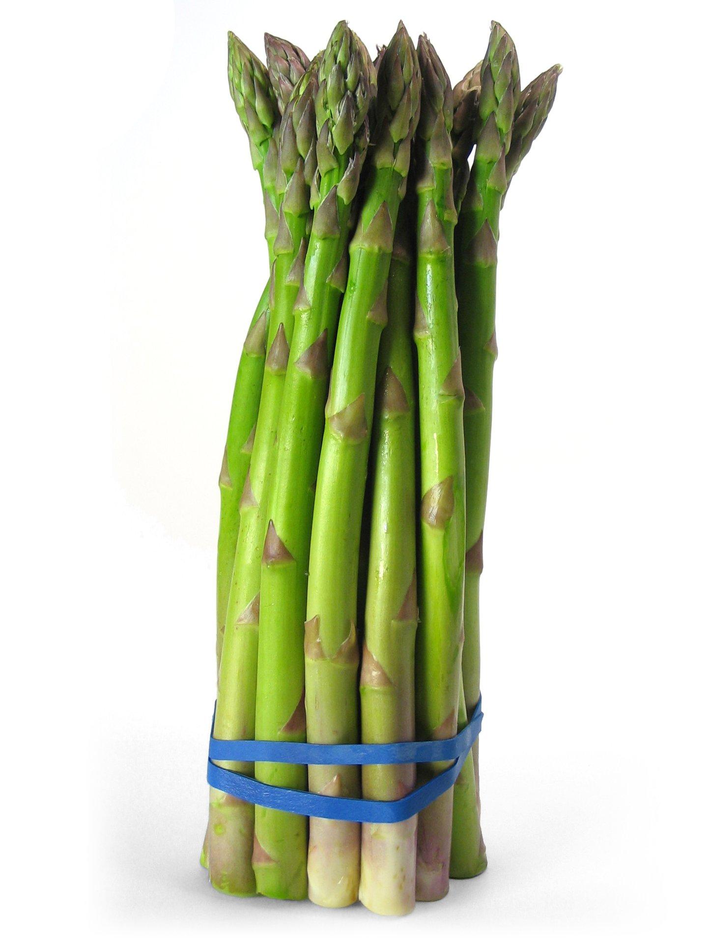 How To Make An Asparagus Vase Flower Press