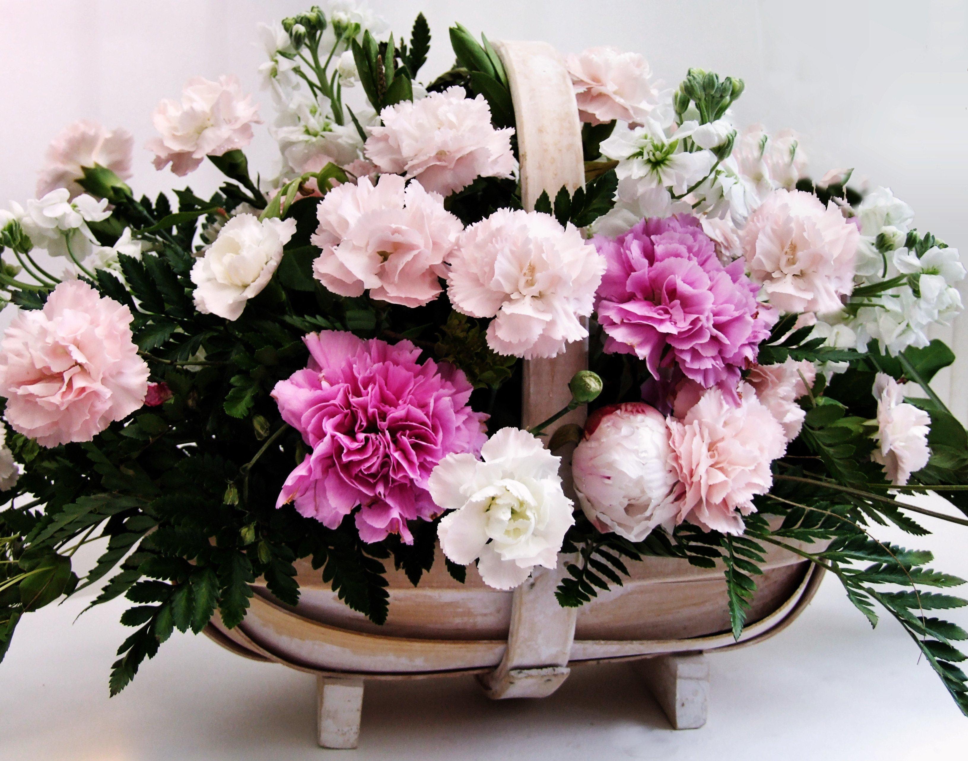 What makes some flowers last longer - Flower PressFlower Press