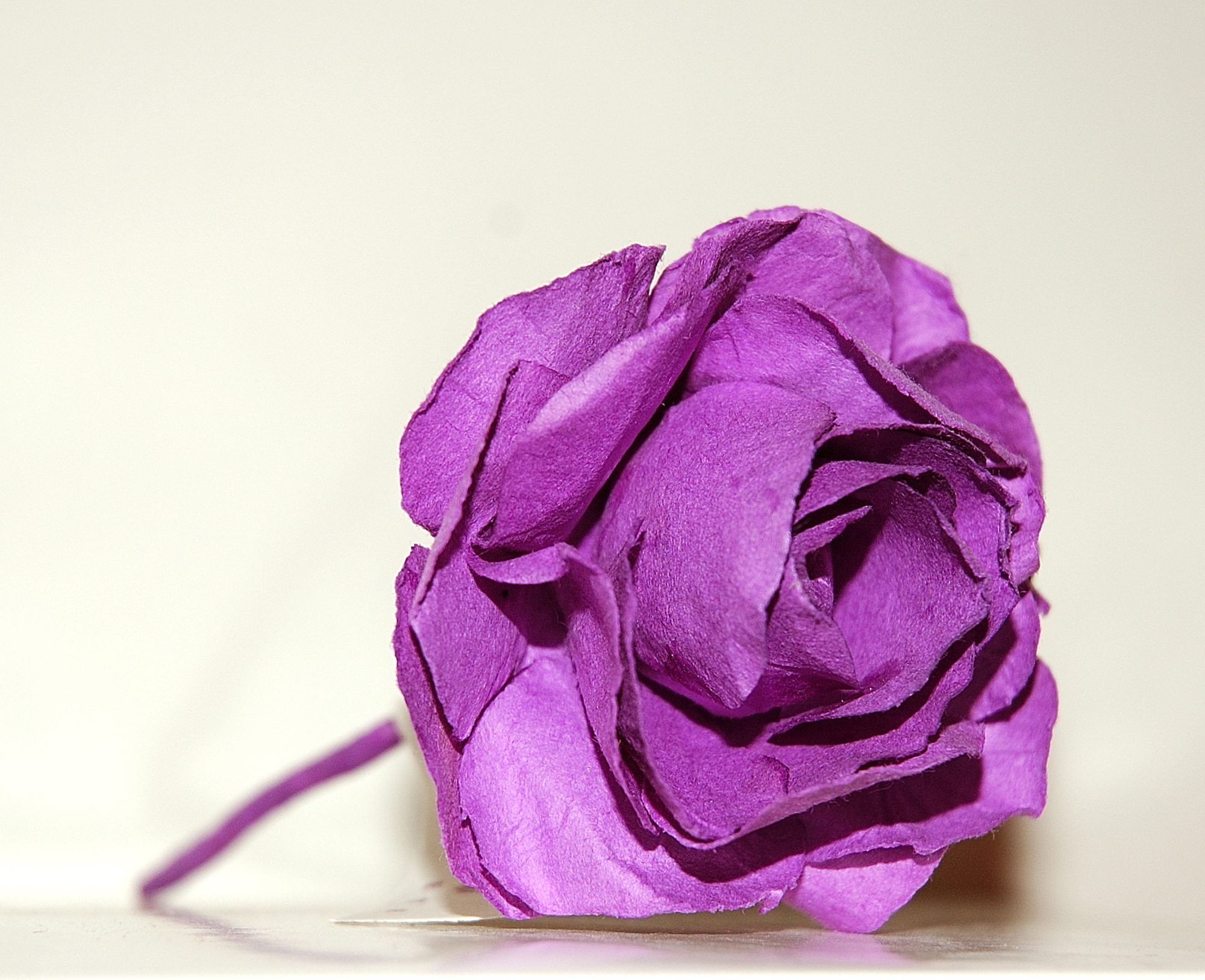 Make Flowers From Tissue Paper Flower Pressflower Press