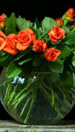 Flowers and aspirin