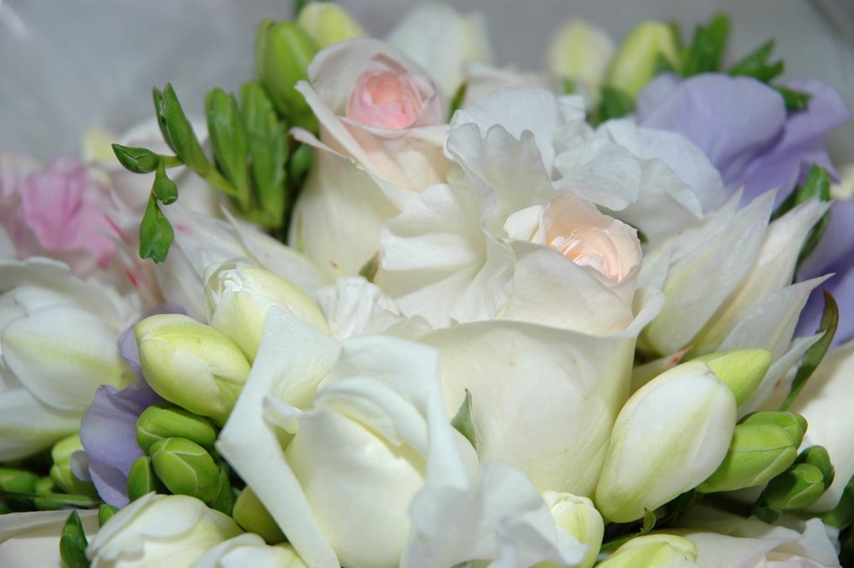 Finding fresh flower deals