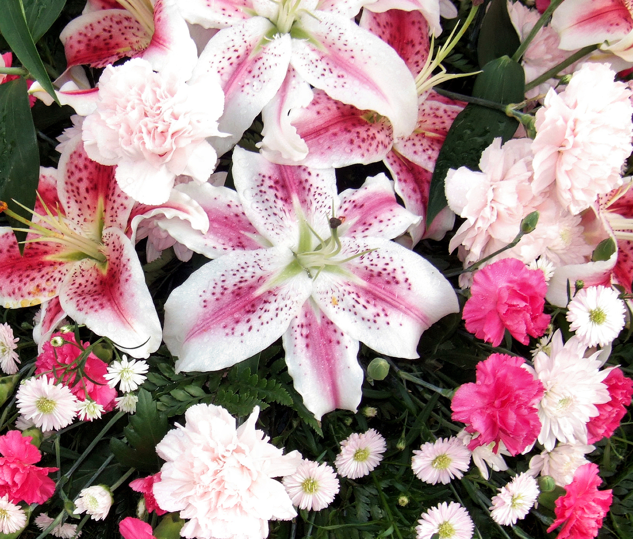 flowers available throughout the year