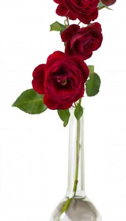 Pamper your Valentine at work