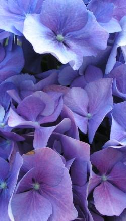 Nesting-themed flower arrangements