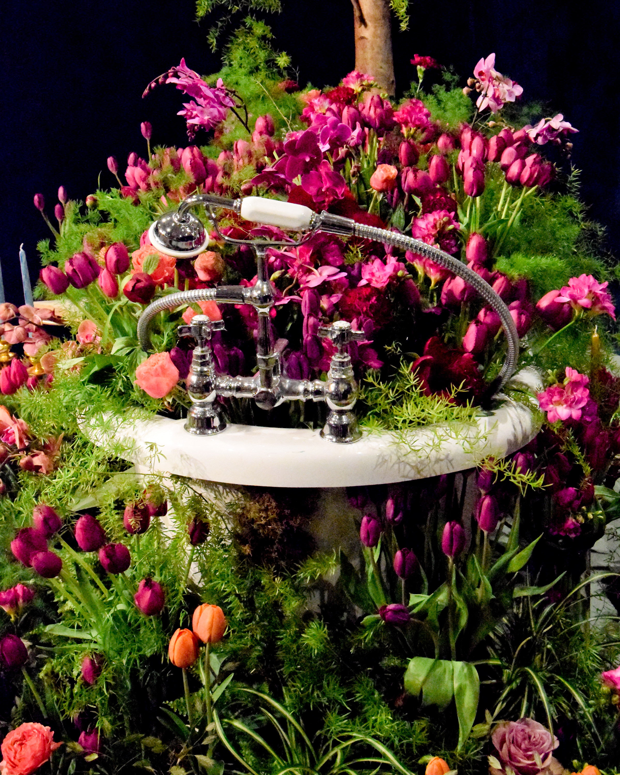 Prestige Attends 2018 Harrogate Flower Show Flower Pressflower Press