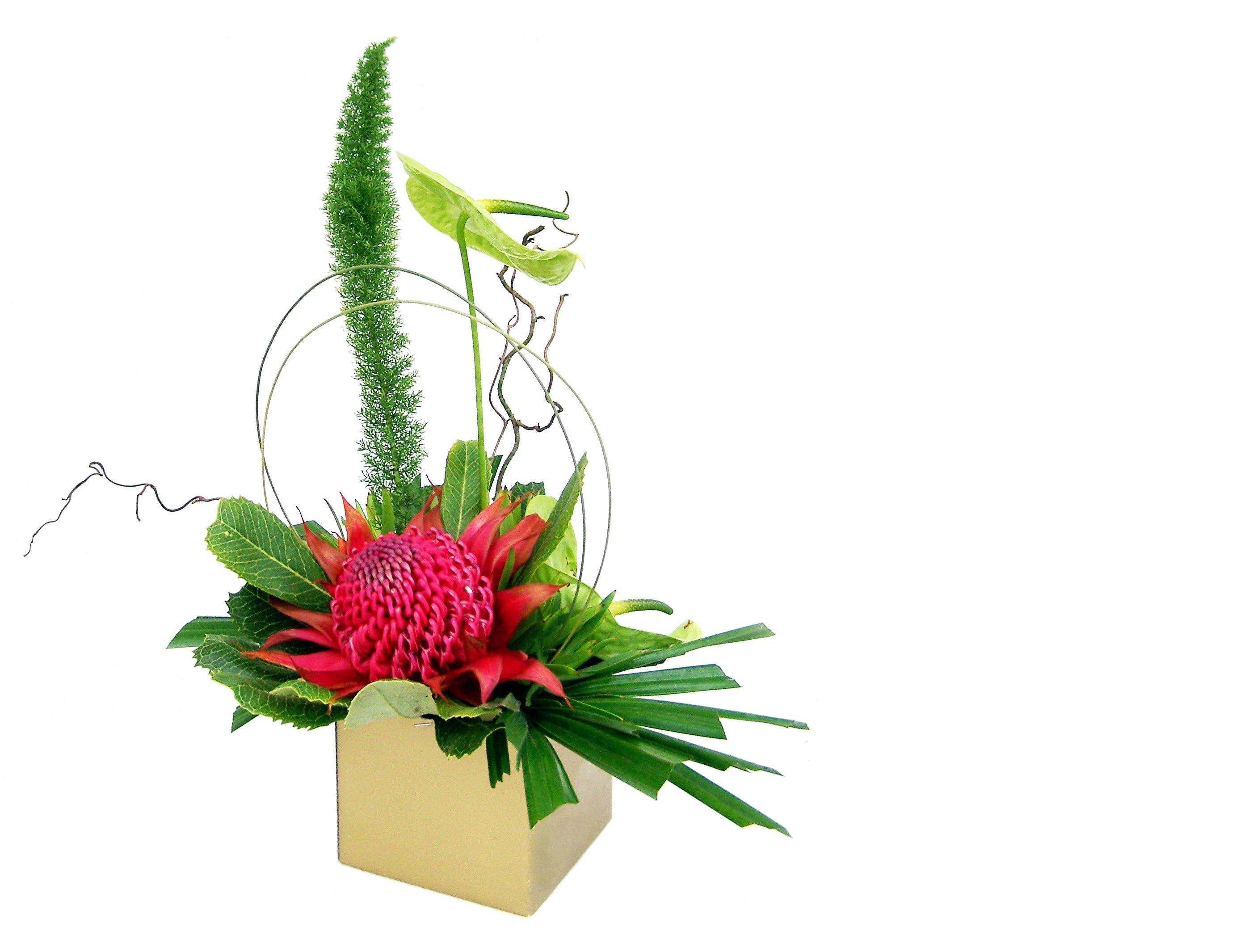 Office flower 97