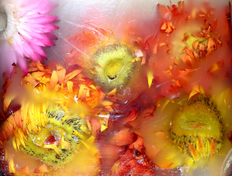 Make floral gel candles yourself