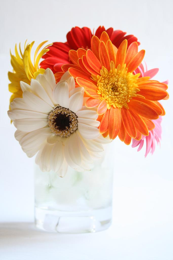 How to arrange flowers in a short vase