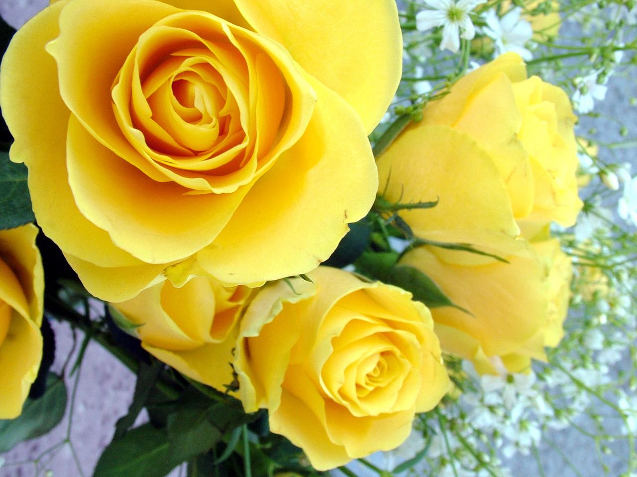 Send joy when you send flowers
