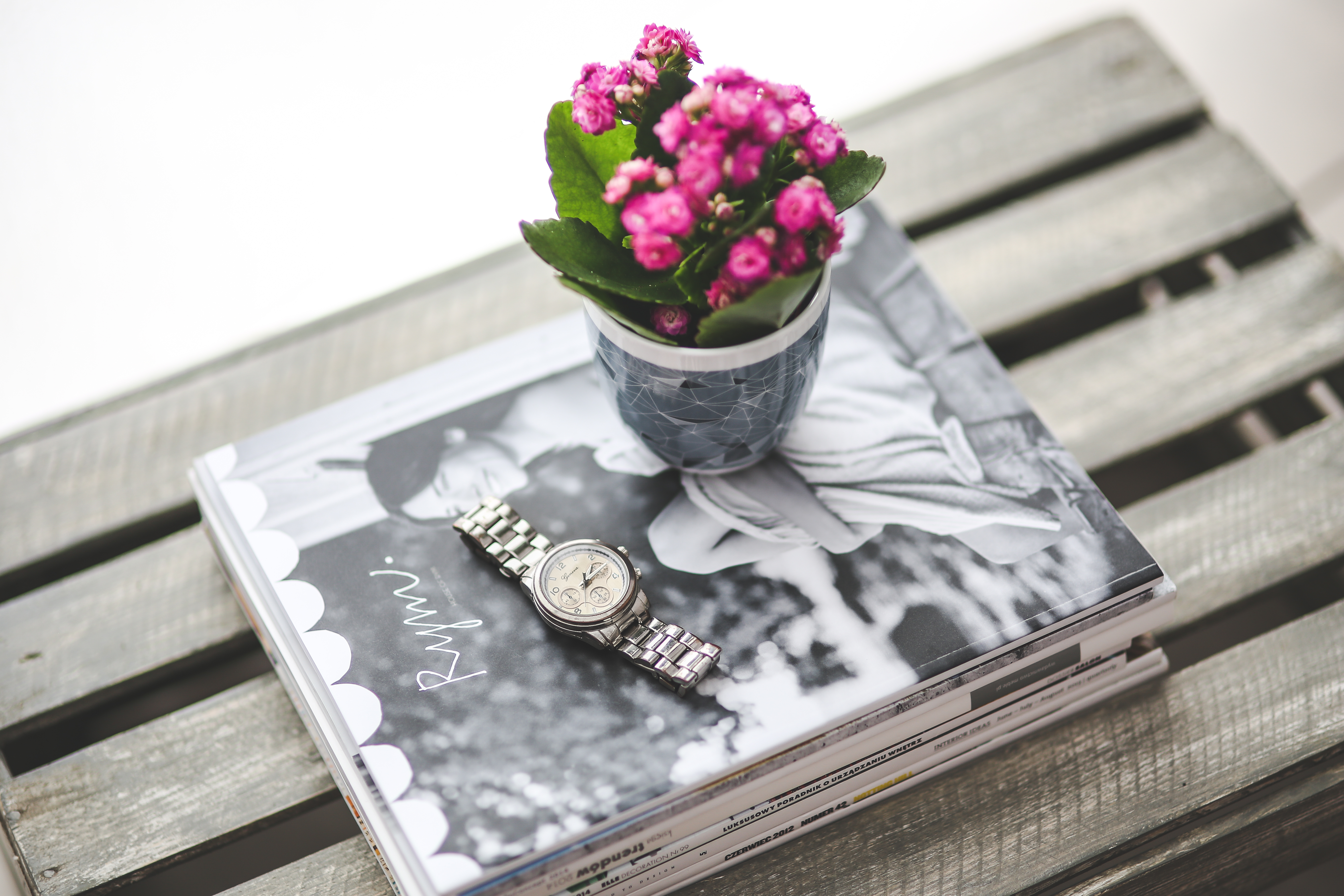 How to take are of a kalanchoe plant