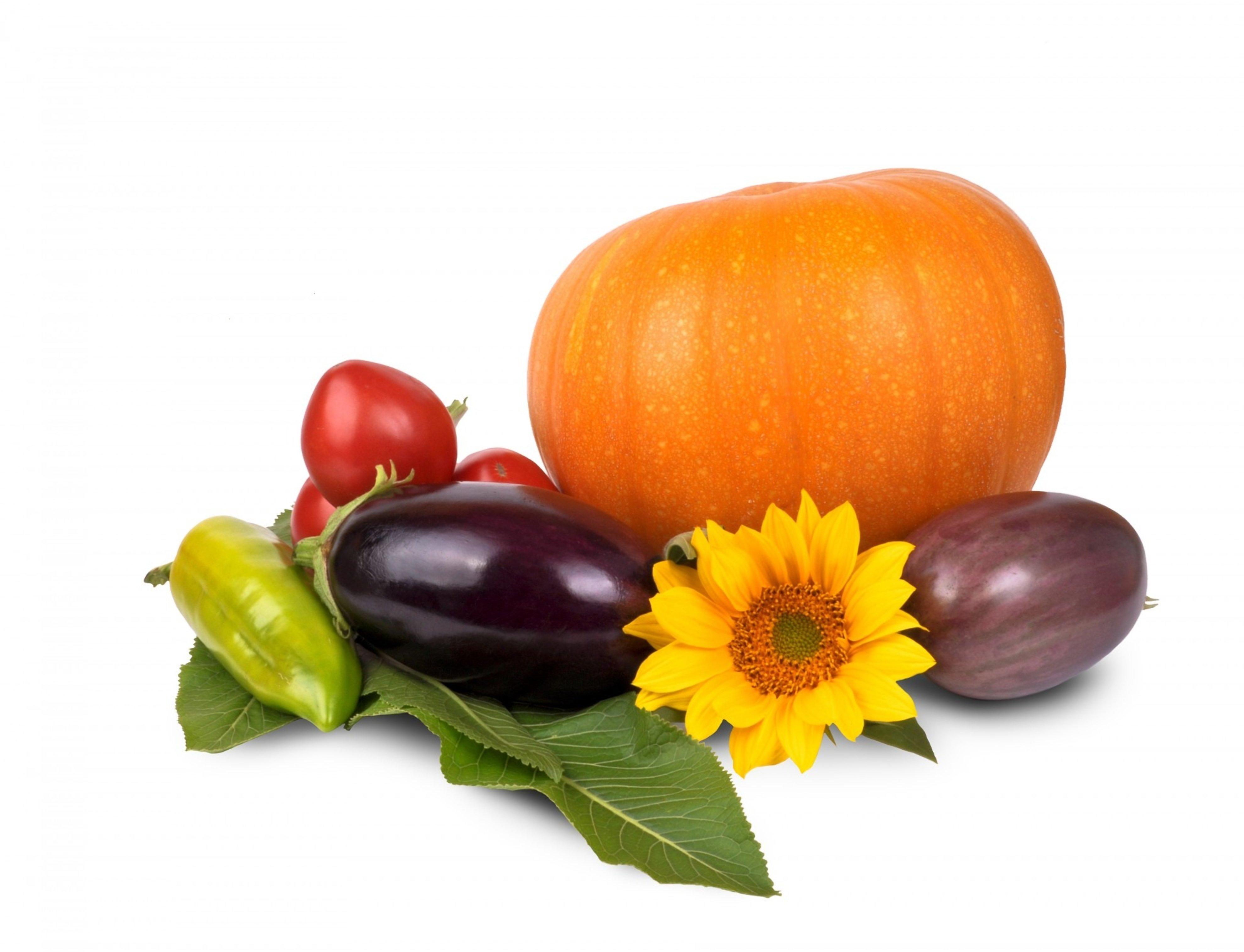 Top foods to enjoy this autumn