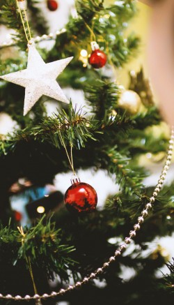 Give your home that Christmas smell