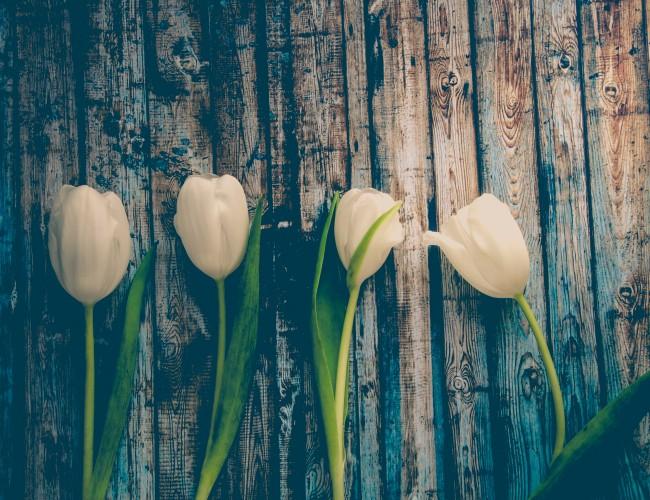 Rustic winter flowers